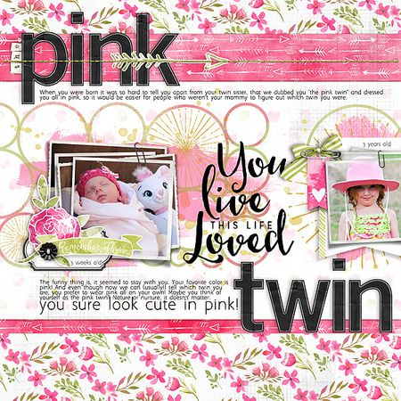 The pink twin copy